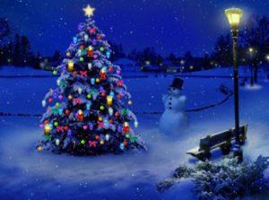 4 Ways To Put Christmas Lights On Outdoor Trees